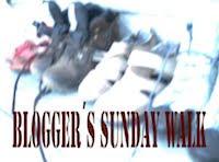bloggers-sunday-walk-ill-utformimng-2