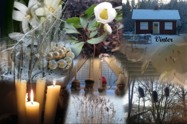 Collage_vinter17bloggtext